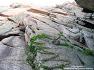 설악산 울산암 인클 주니어 등반