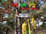 [영등지맥1구간] 경북영양 (분기봉~가랫재) 2019.11.23일산행