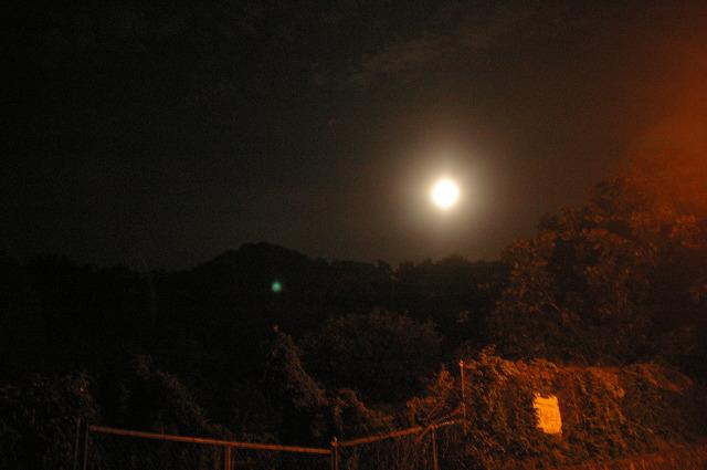 산중의 저 달에게 내 마음 전할까